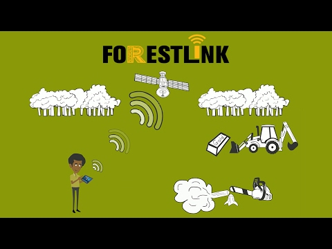 FORESTLINK: The Future of Rainforest Protection