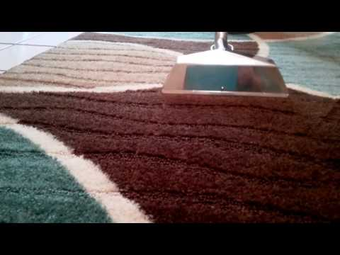 In Home Area Rug Cleaning in Sarasota