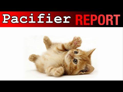 Pacifier Report: Animal Babies