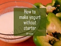How to make yogurt or curd without starter
