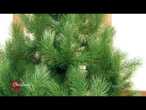 Factory artificial Christmas trees