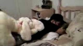 Joe's Dog Porn.mp4
