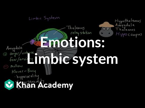 Emotions: limbic system | Processing the Environment | MCAT | Khan Academy