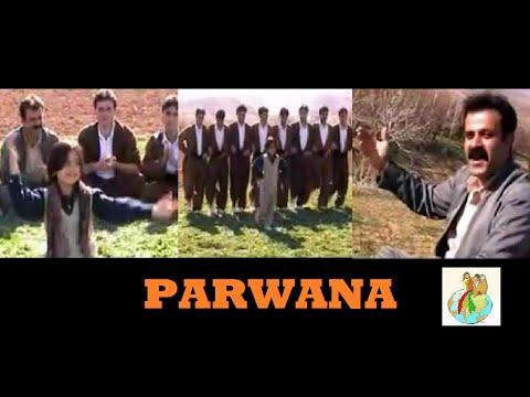 Xxx Mp4 Parwana Kurdish Music Halparke 3gp Sex