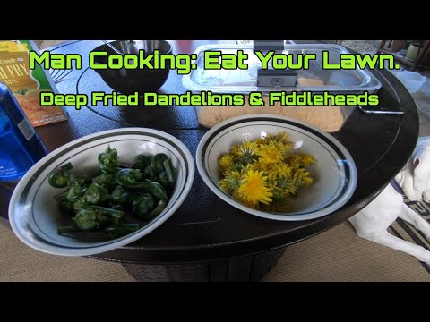 Man Cooking: Eat Your Lawn. Deep Fried Dandelion & Fiddlehead.