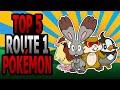 Route 1 Pokémon - Top 5 (Ace Trainer Liam)