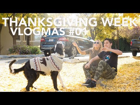 VLOGMAS #1 2017 - Thanksgiving Week