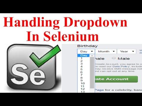 Handle Dropdown in Selenium WebDriver