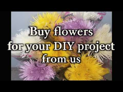 Bulk flowers for your DIY project