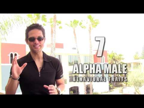 7 BEHAVIORAL TRAITS OF HIGHLY SUCCESSFUL ALPHA MALES ( DO NOT WATCH!!! )