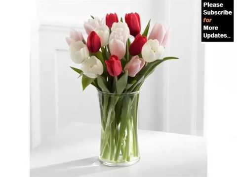 White Tulips In Vase | Beautiful Pictures Of White Folwers - Phula Pics