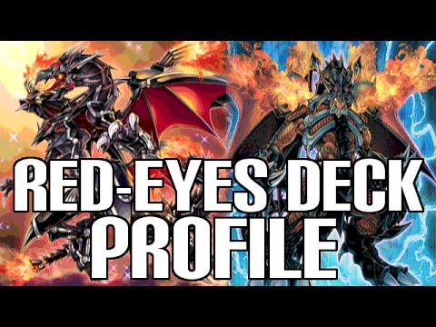 Yugioh Red Eyes Black Dragon Deck Profile - August 2015
