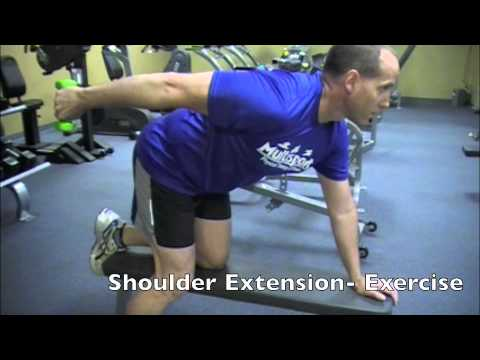 Shoulder Extension- Exercise