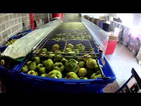 cider day 8 prepration. cider making never got to happen!