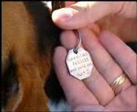 Pet iD.com is what a Pet Registry should be!!