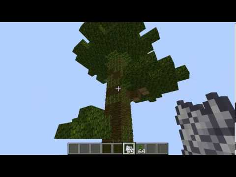 Minecraft How To: Grow Giant Jungle Trees (4 blocks wide) v1.4.2 - v1.4.7