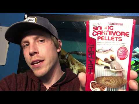 Review: Sinking Carnivore Pellets Food by Hikari