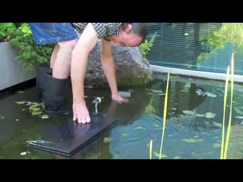 # 218 Roof Top Pond Part two Carls Aquarium