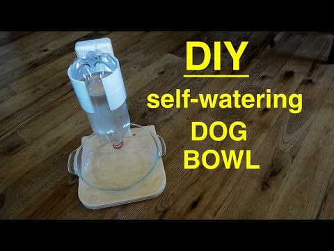DIY ● Self Filling Water Bowl Dispenser for Your DOG  ( that works ! )