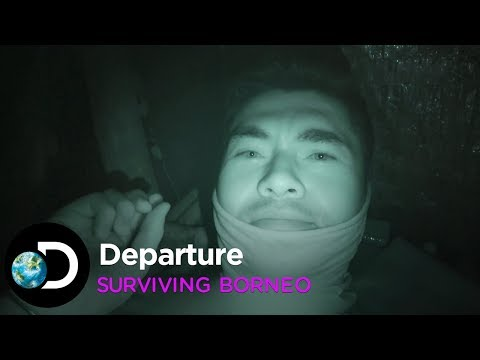 Departure | Surviving Borneo
