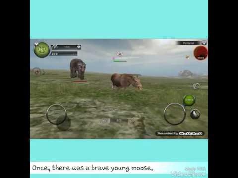 A Wild Animals Online LOVE STORY💖💖💔