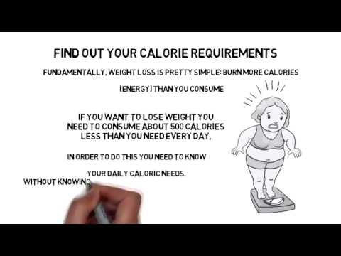 Find Out Calorie Requirements - Loseweightveryfast