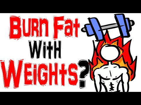 Weight Training VS Low Intensity Cardio  - Best Way to Burn Fat?