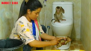 Baby Monkey Luna Sit On Toilet looking Mother Taking Bath For Baby Monkey Nina