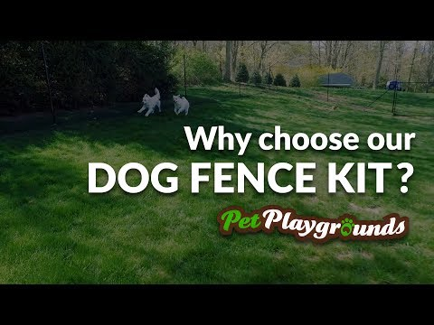 DIY Dog Fence Kits for escape artist dogs
