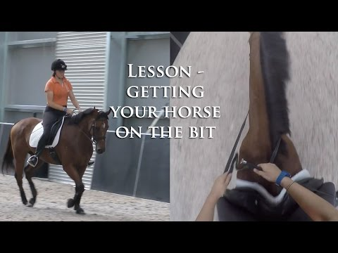 How to get your Horse on the Bit (LESSON) - Dressage Mastery TV Ep72