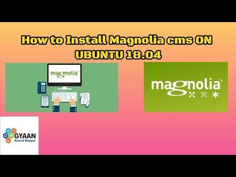 How to Install Magnolia CMS on Ubuntu 18.04