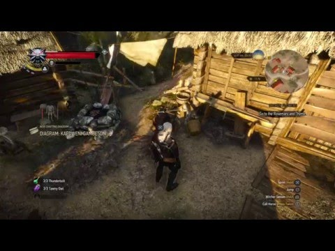 The Witcher 3 UNLIMITED Money Glitch ! WORKING PATCH 1.20 & 1.22