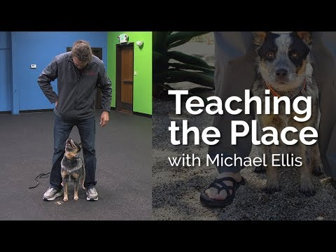 Teaching the Place with Michael Ellis
