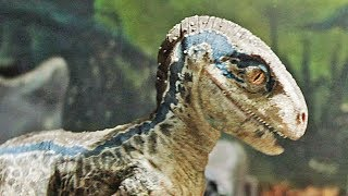 Jurassic World 2: Fallen Kingdom - Meet Blue | official trailer teaser #6 (2018)