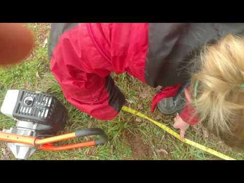 Laying out the post holes for the box garden - Terrible video