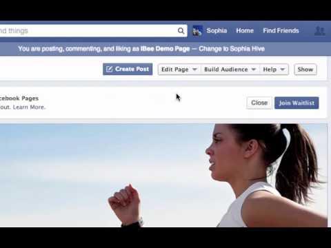 How to Create a Facebook Pollinator