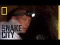 Download                Simon vs. Rock Python - Episode 2 | Deadliest Snake Encounters MP3,3GP,MP4