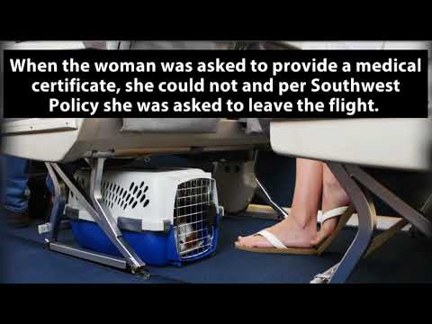 Southwest Airlines Passenger Removed Forcibly from Plane