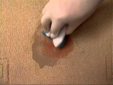 Carpet Cleaner   Rimozione Macchie con risciacquo