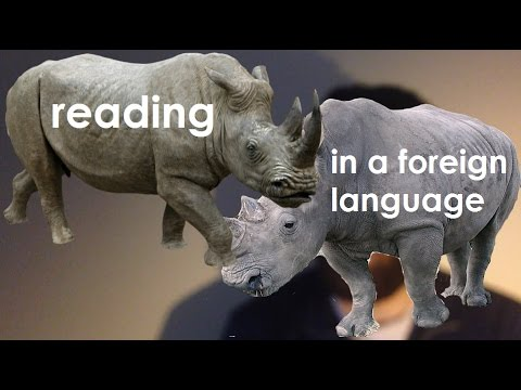 I Finished My First Book! Tips for reading in a foreign language (En & Fr subtitles)