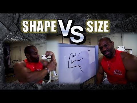 Make Your Arm Muscles Look BIGGER.....     Shape vs. Size   [ Big Biceps, Forearms & Triceps ]