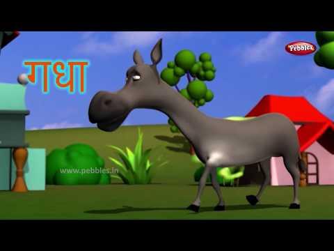 Animal Facts in Hindi | Donkey Facts Hindi | Donkey Essay in Hindi | Donkey Song | Donkey Story