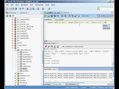 Oracle INSERT command - Beginner