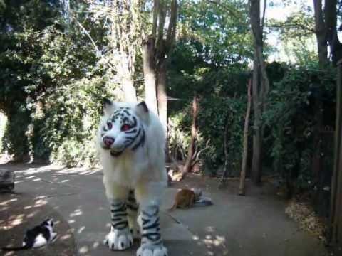 Tiger Quadsuit Costume