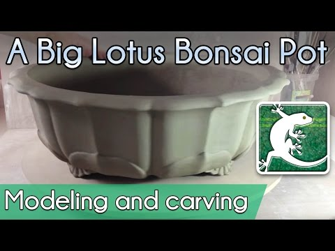 💮 How to make a big lotus bonsai pot