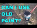 Can I use old latex paint to paint my house?