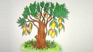 How To Draw Mango Tree Videos 9videos Tv