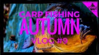 CARP FISHING IN AUTUMN THE PARK LAKE - VLOG #9 😀