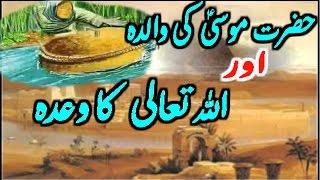 Musa A.S Ki Walida Aur Allah Ka Wadah