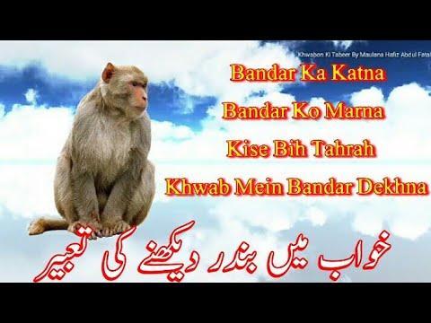 Monkey In Dream || Khwab Mein Bandar Dekhna Ki Tabeer
